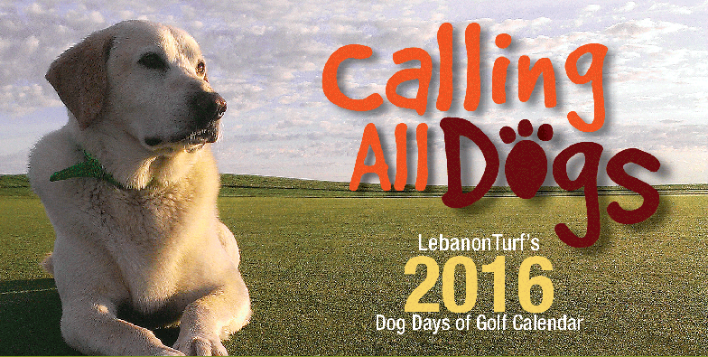 2015-dog-calendar-enter-cropped