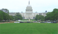 America's front yard in Washington, D.C.