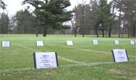 2017 snow mold field trials