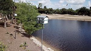 Bird Box Program at Olde Florida Golf Club
