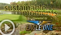 Sustainable Moment: Creating snags and woodpiles on the course