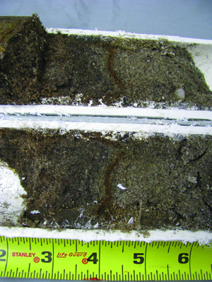 Iron-cemented layers in putting green soils: photo 3